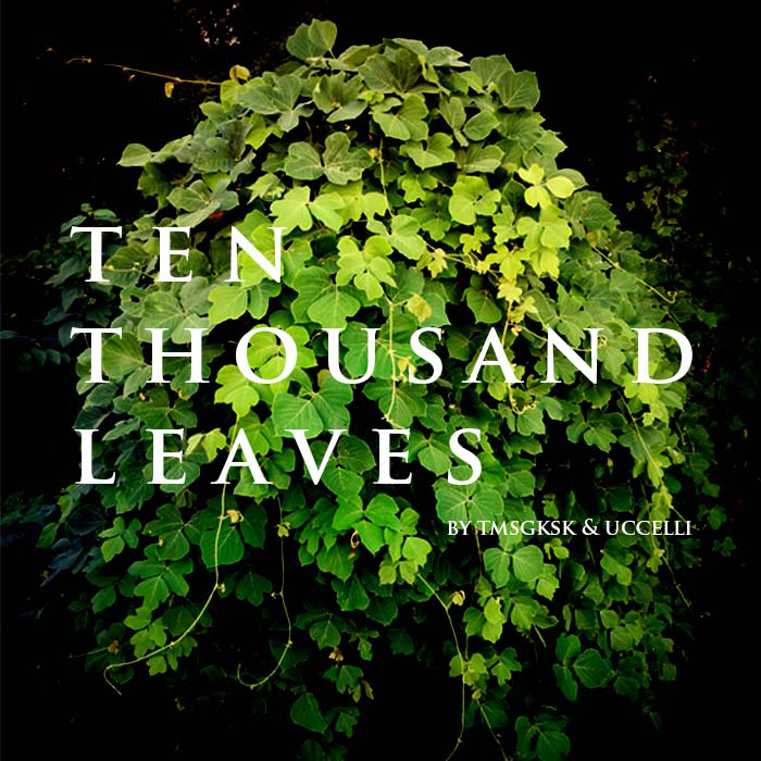 "tmsgksk & uccelli ""Ten Thousand Leaves"""